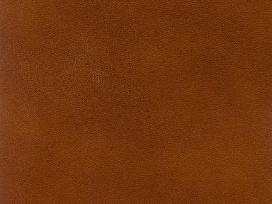 Brunschwig & Fils OLD ENGLISH ANTIQUES LEATHER BRANDY BR-20009.839