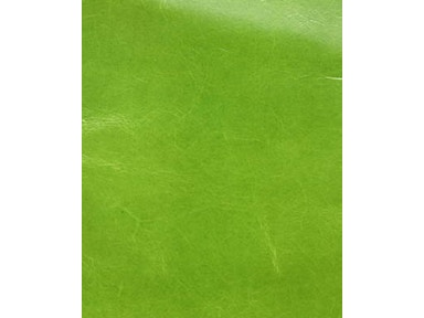 Brunschwig & Fils URBAN LEATHER LIME BR-20028.425
