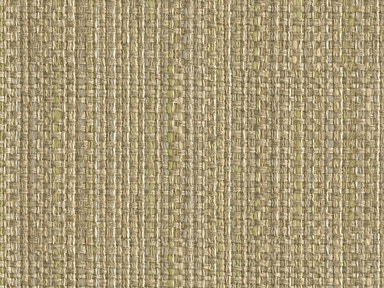 Kravet Smart IMPECCABLE DIME 31992.11