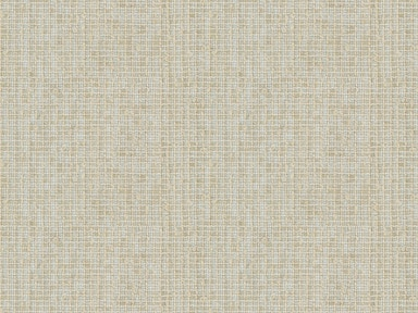 Kravet Couture AIRILY SHEER PLATINUM 3953.11