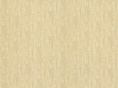 Kravet Contract KILLEEN SPUN GOLD KILLEEN.1