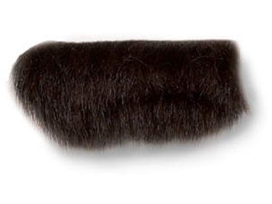 Kravet FUR BRAID T30234.6