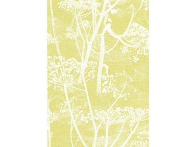 Cole & Son COW PARSLEY WHITE/Y 66/7051.CS