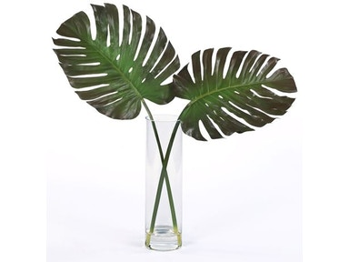 Amazon Split Leaf in Water 10076