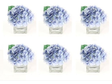 Blue Hydrangea in Water 10082