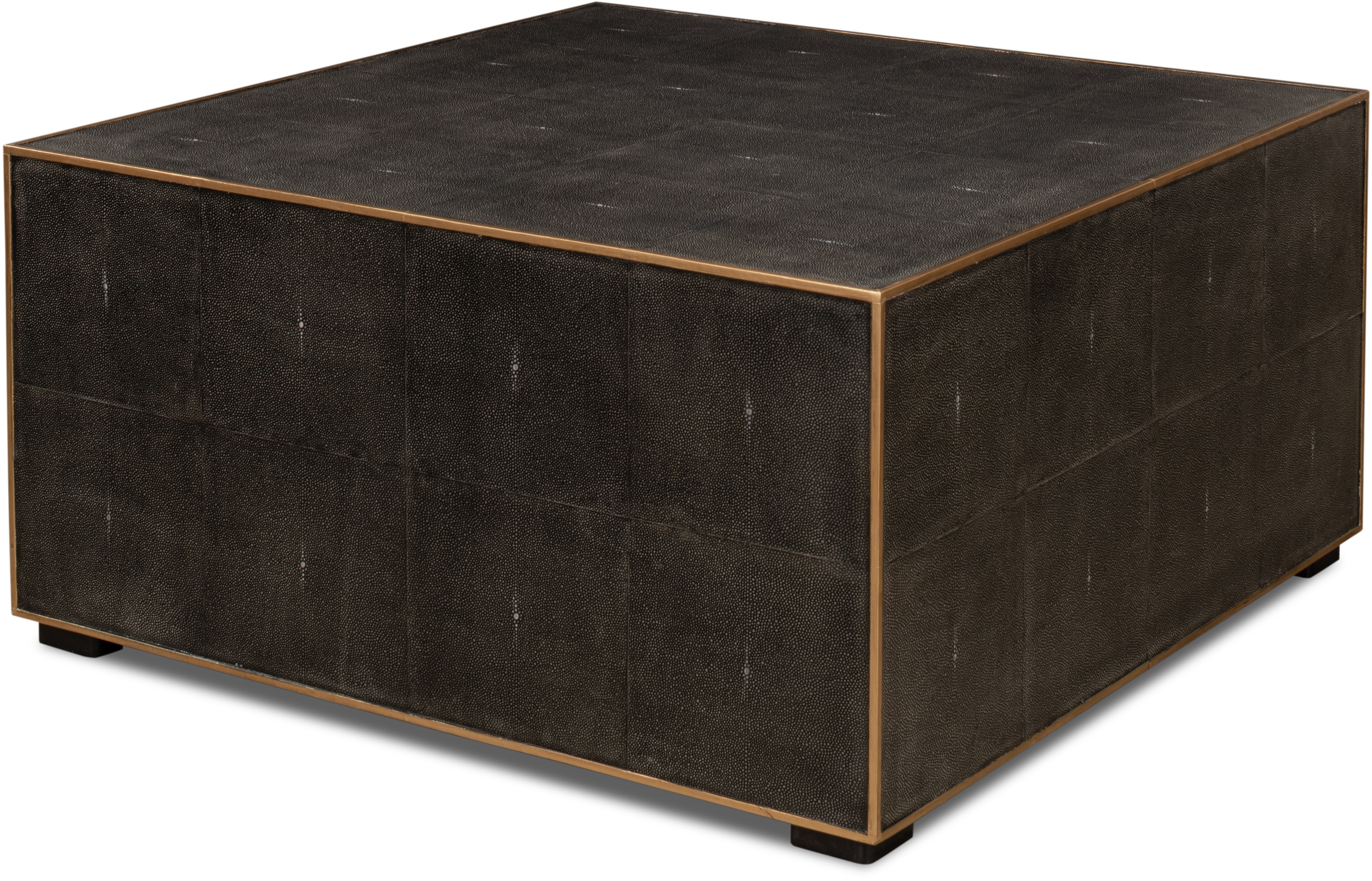 Midnight Coffee Table Sa30877