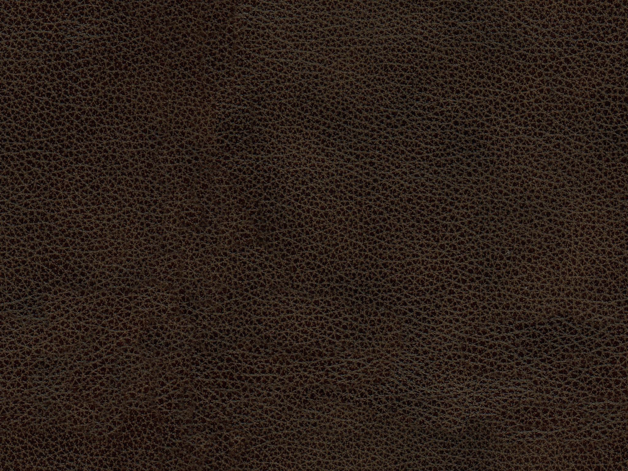 Elements International Torino Leather Saddle Brown 320
