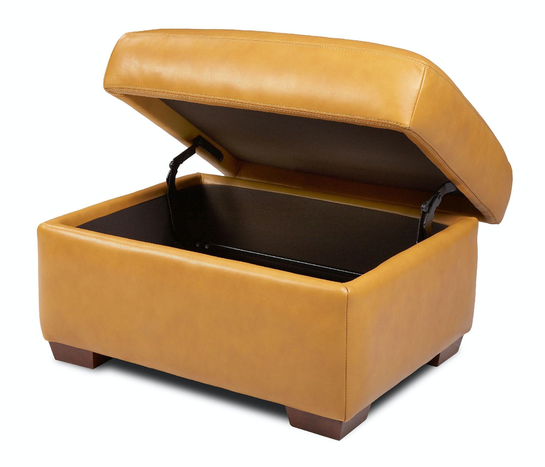 American Leather Storage Ottoman CSN STO ST