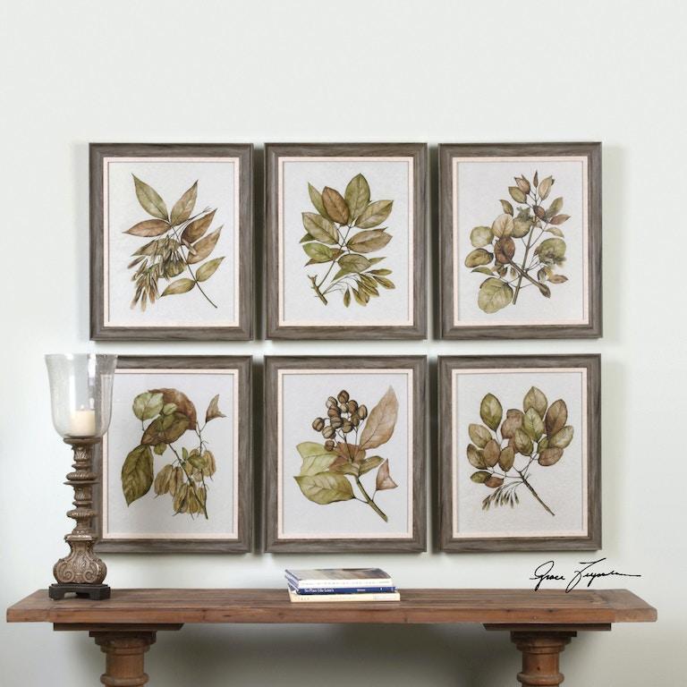 Uttermost Seedlings Framed Prints S/6 33643