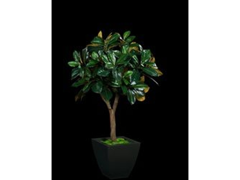 Tree Masters Accessories Next Generation Magnolia Tree In 55seb W
