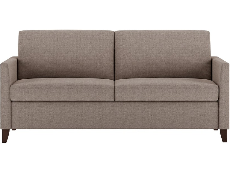 Brilliant American Leather Living Room Two Cushion Comfort Sleeper Sofa Hrs So2 Qs Creativecarmelina Interior Chair Design Creativecarmelinacom