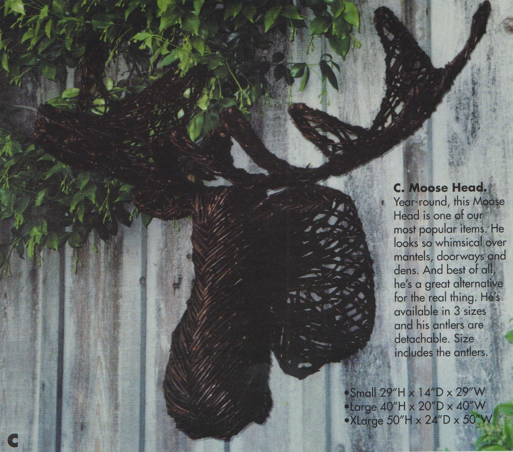 Vine Creations Accessories Moose Head VC003 At High Country Furniture U0026  Design