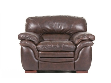 Santa Cruz Leather Chair