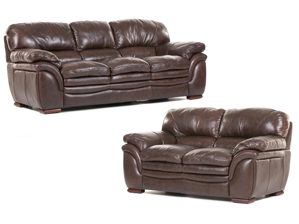 santa cruz leather sofa and loveseat