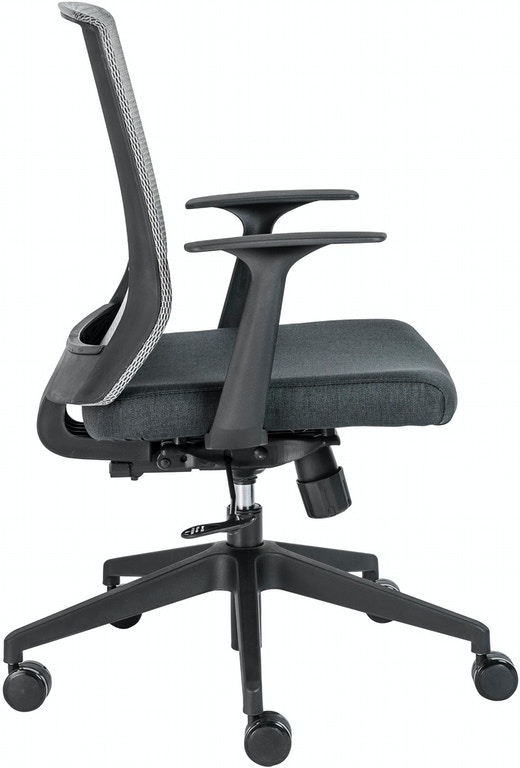Astounding Office Chair With Fixed Arms Ocoug Best Dining Table And Chair Ideas Images Ocougorg