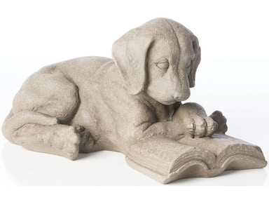 Alfresco Home Reading Puppy 61-1236